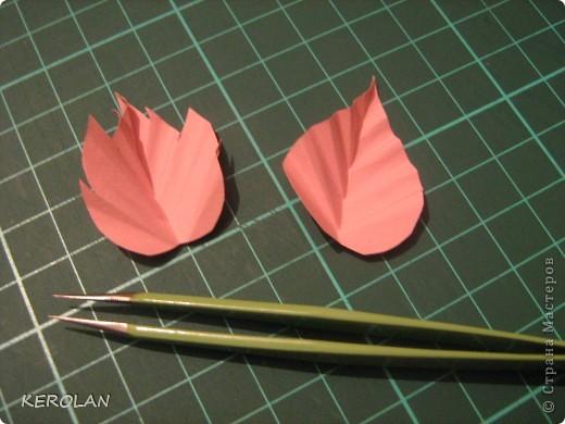 предлагаю небольшой мастер класс-как сделать листочки для работ в квиллинге. Дело в том, что просматривая работы у девочек, я обнаружила, что рядом с прекрасно выполненными цветами лежат листочки , хорошо вырезанные, но жилки прорисованы фломастером. Это не квиллинговые листья.  Для листьев мы применяем бумагу от 120 до 180 граммов, называется Вивальди или Митант сейчас появилась Фабриано. фото 14