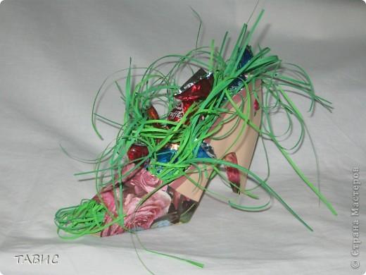 Пришла весна, природа пробуждается и даже в дамской туфельке проросла зеленая весенняя травка!