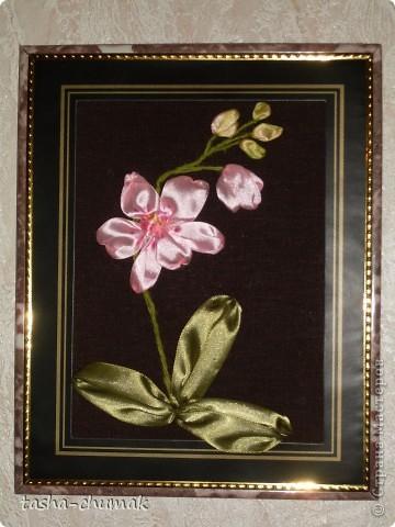 Розовая розочка фото 2