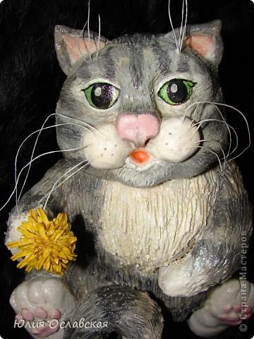 Вот такой котик поселился у меня дома) фото 2