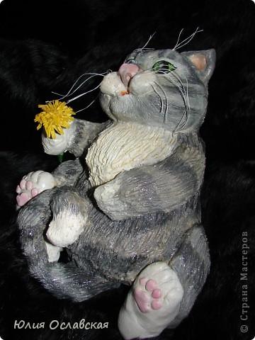 Вот такой котик поселился у меня дома) фото 3