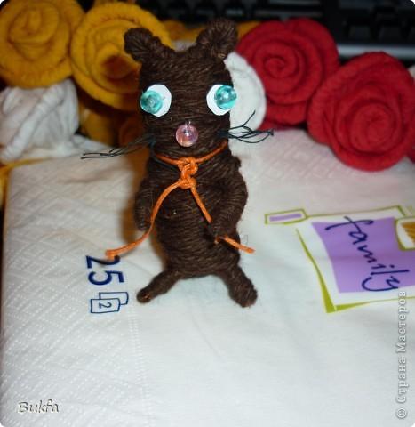 Дорогие мои котоводы! Как и обещала смотала котика... Но получился не мышонок, не лягушка, а неведома зверушка. Так что, чисто для смеха (мягко выражаясь) показываю, как и обещала. Хохочу, как сумашедшая. И вы посмейтесь! фото 3