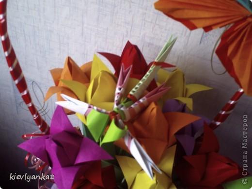 Цветы, стрекоза, бабочки фото 1