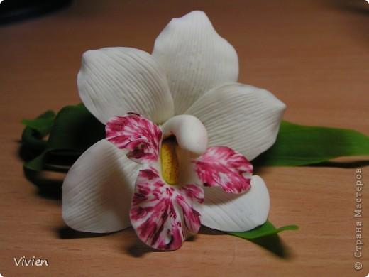Ну вот и я вылепила орхидею. Сегодня курсы помогли, глина была супер, материалы все, какие нужно, Вообщем, красота! Я имею ввиду не свой цветок, а процесс-) Цветок можно использовать в качестве прихвата для штор, да и просто носить как браслетик, например, на свадьбу самое оно-) фото 3