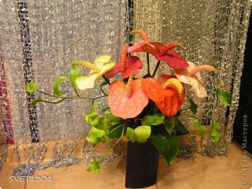 Давно хотела сделать антуриумы, но ни как не могла придумать как прикрепить между собой ствол, цветок и пестик. И вот вопрос решён (всего две неудачи выбросила)!А о результате судить Вам дорогие мастера. фото 1