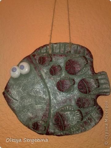 мой очередной солёный рыб)) фото 1