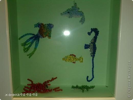 Морские глубины. Здесь дельфинчик, радужная рыбка, бычок, морской конек, крабик и крокодильчик фото 1