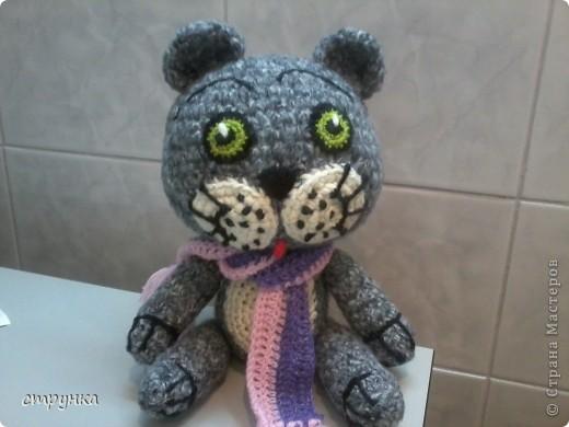 мартовский кот фото 2