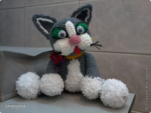 мартовский кот фото 6