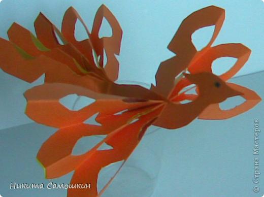 Поделка изделие Бумагопластика Жар-птица из цветной бумаги  Бумага фото 4