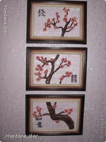 Сакура. Триптих фото 1