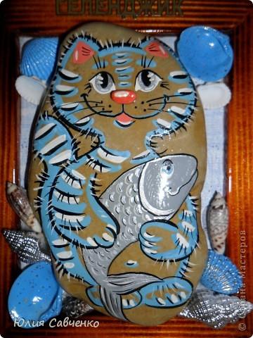 Морские котики фото 14