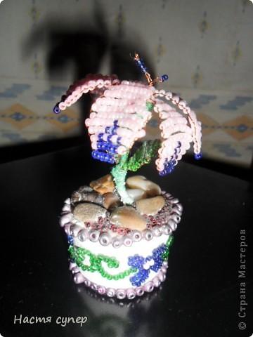 цветик семицветик фото 1
