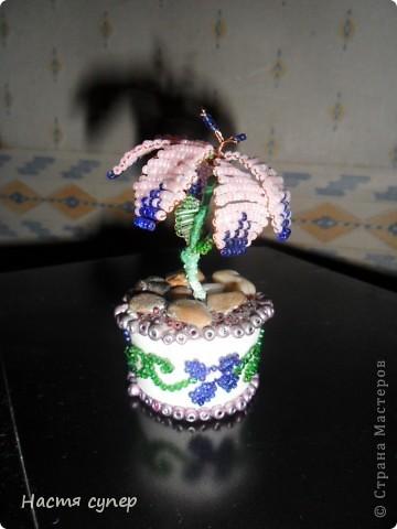 цветик семицветик фото 2