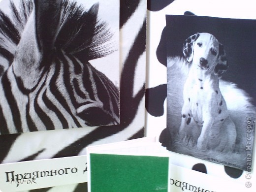 """Вот такие чёрно-белые блокнотики """"Зебра"""" и """"Далматинец"""" у меня получились. Просто у меня принтер только чёрно-белый. фото 16"""