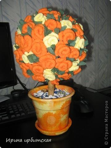 Мамочке деревце в подарок! Из пластмассового горшочка! фото 1