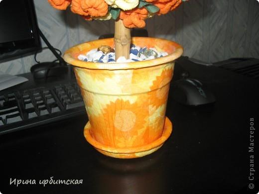 Мамочке деревце в подарок! Из пластмассового горшочка! фото 2