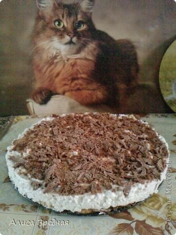 Всем привет))) сегодня я решила побаловать своих домашних и себя легким творожно-шоколадным тортиком, который не нужно печь. приготовила я его вчера и оставила на ночь в холодильнике (а вообще его можно есть через 3 часа) так сказать сюрприз)))) фото 1