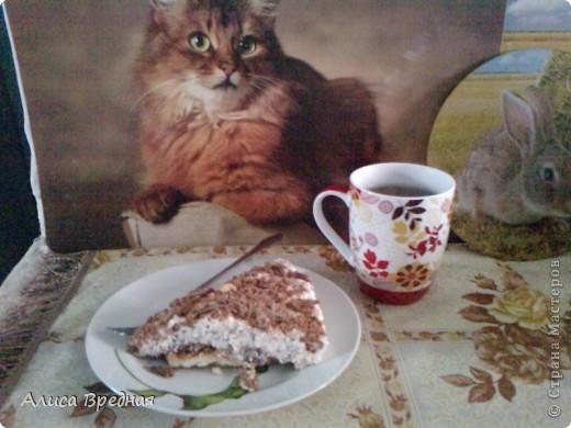 Всем привет))) сегодня я решила побаловать своих домашних и себя легким творожно-шоколадным тортиком, который не нужно печь. приготовила я его вчера и оставила на ночь в холодильнике (а вообще его можно есть через 3 часа) так сказать сюрприз)))) фото 10