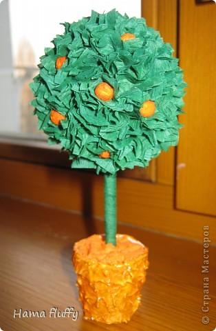 Вот и я решилась на деревья. Даже не думала, что это так затягивает ). Вот родилось апельсиновое деревце. Высота 13 см.  фото 1