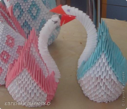 птички мои фото 4