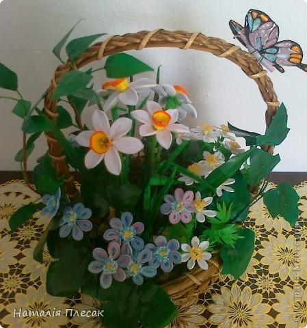 Наконец то повеяло настоящей весной!!! Начинают расцветать первые весенние цветочки. Хрупкие, нежные... И у меня весеннее настроение. Хочу подарить его и Вам!!! фото 5