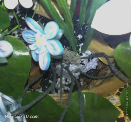 Наконец то повеяло настоящей весной!!! Начинают расцветать первые весенние цветочки. Хрупкие, нежные... И у меня весеннее настроение. Хочу подарить его и Вам!!! фото 6