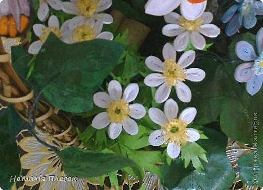 Наконец то повеяло настоящей весной!!! Начинают расцветать первые весенние цветочки. Хрупкие, нежные... И у меня весеннее настроение. Хочу подарить его и Вам!!! фото 3