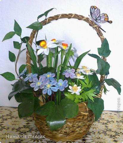 Наконец то повеяло настоящей весной!!! Начинают расцветать первые весенние цветочки. Хрупкие, нежные... И у меня весеннее настроение. Хочу подарить его и Вам!!! фото 7