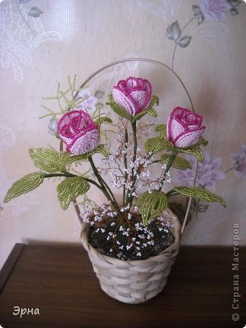 Розовые розы(бисер)