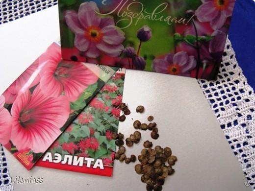 Потому  что нельзя, потому что нельзя, потому что нельзя быть счастливой такой…Сегодня я выступаю в качестве атр-директора двух очаровательных, абсолютно разных женщин и юного дарования.( Оля, опять я директор.) Ну, все равно. Я представлю вам Марину (СИПОЛИК) http://stranamasterov.ru/user/28217 И Юлю ( Yulia L ) http://stranamasterov.ru/user/10241 Они, конечно, у нас девушки известные, но коль уж мне представился случай , я им всенепременно воспользуюсь, тем паче, что Марина нас особо не балует. Вы были когда- нибудь в раю? Нет? И правильно делаете.  Пусть я побываю там первая ( ну и пусть, что во сне) и все вам расскажу. Так вот. Как вы помните в субботу с Женей я начала свое воспарение.  Как все это происходило  все, кому это было интересно, наблюдали. Не прошло и дня, в течение которого полет продолжался, как случилось непредвиденное. Мой полет был временно прерван, чему я была несказанно рада. За время воспарения я приобрела некую закалку и при возникновении непредвиденных обстоятельств рассудок уже не теряла, и эмоции мои были обузданы, но…. Но я потеряла сердце - орган как всем известно жизненно-важный, поэтому  пришлось проситься в Рай на время, пока не найдется мое сердце. Оказалось, что там принимают... И вот….       фото 28