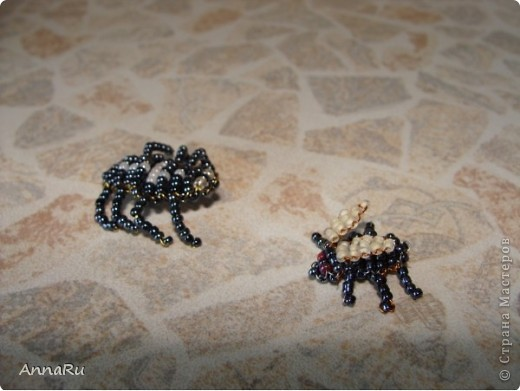 Животные и насекомые фото 9