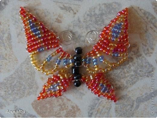 Бабочки фото 3