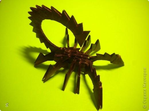 Вот такого маленького красавца мы сейчас будет делать.  Шаг 1: Заготовка. Для этого бумажного скорпиона нам понадобятся 77 модулей 3*4,5 см. Если делать из больших модулей - эффект живого скорпиона не будет достигнут, т.к. чешуйки буду очень большими и неестественными. Модули можно изготовить по данной схеме https://stranamasterov.ru/technic/origami_module?tid=451 . фото 1