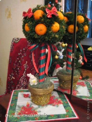 Мое новогоднее мандариновое дерево фото 1