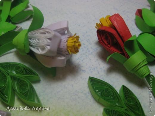 """Лирическое отступление. ВЕРА НАЙДИЧ """"МАЛЬВА"""" Красавица мальва под окном расцвела, И на праздник лета она нас позвала, Розовые, нежные,славные цветы, Мальву нарядили на конкурс красоты. Гордая красавица надменно глядит, Под ветром не сгибается, лишь шелестит. Есть в цветке загадка, какая не пойму, Очень осторожно к мальве подойду. И шепнет она мне на ушко свой секрет, Но только не раскрою вам его я нет! Розовую мальву с любовью обниму, Задумчиво и тихо от мальвы отойду. А зимними ночами буду вспоминать, Как ходила летом я мальву обнимать. Вот тогда и вспомнится мне ее секрет """"Не гордись, красавица, счастья в этом нет!""""    фото 18"""