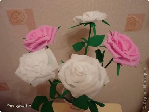 Вот такие у меня получились розы) фото 1