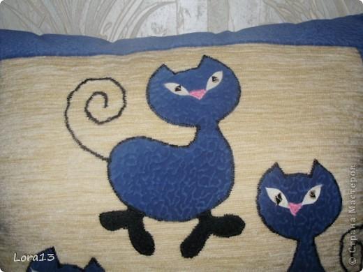 Синие коты фото 2