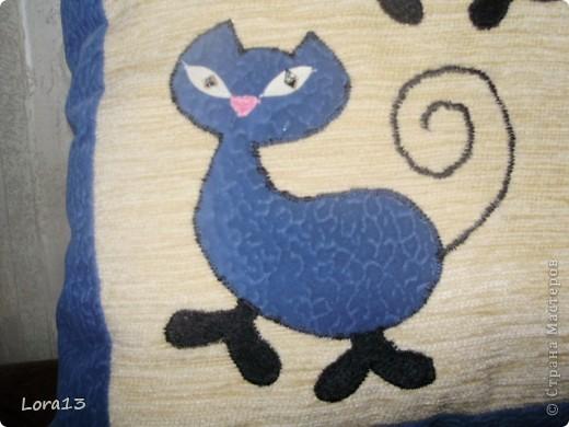 Синие коты фото 3