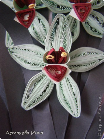 На день рождения мне подарили цветок зеленой орхидеи в коробочке. Простояла она недолго, поэтому решила продлить удовольствие, сделав его из бумаги. Вот что получилось. фото 3