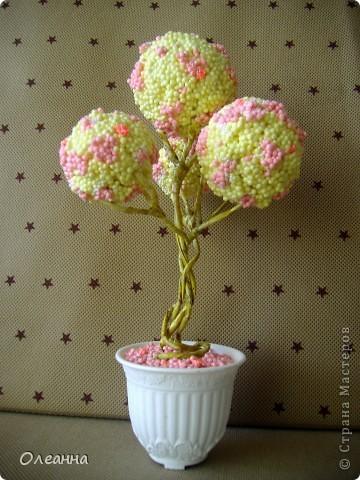 Случайно обнаружила у себя забытую упаковку шарикового пластилина и тут родилась идея такого вот дерева.  фото 2