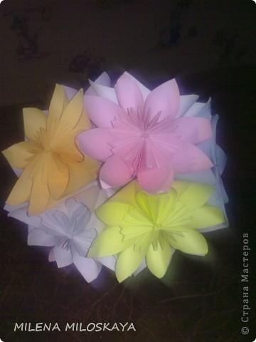 Цветочная кусудама фото 1