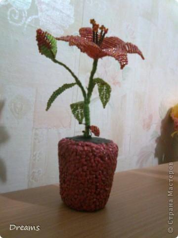 Увидела однажды у подруги такой цветочек и решила сделать сама фото 3