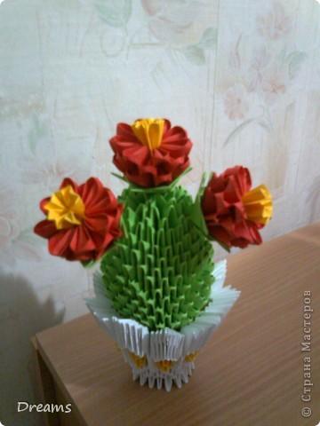 Вот такой кактус-повторение получился! фото 1