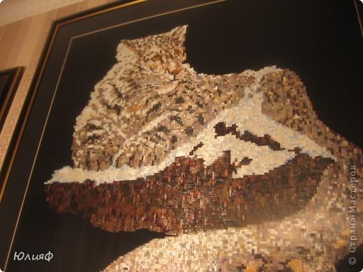 Работа моей родственницы, Мининой Ирины Викторовны. Сделаны из соломы, в технике мозаика. Другие ее работы можно увидеть в моем блоге. фото 3