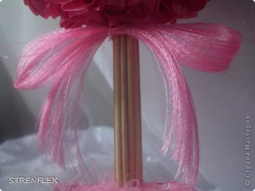 Вот такое нежно-розовое деревце выросло у меня для дочи моей старшей кумушки. Юной леди 8 лет, но кто ж в таком возрасте откажиться от розового дерева. Поэтому скоро оно вместе с апельсиновым уедет в Киев!!! фото 10