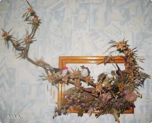 Хочу показать некоторые мои работы из сухоцветов. Может кому-то приглянутся отдельные идеи :). Увлекалась этим давно - лет 8 назад. Кое-какие работы оказались недолговечными, а многие радуют и по сей день - разве что чуть поблекли немножко.  Очень люблю этот венок. Растения закрепляла на сплетенном из ивовых веток венке. В венок вошли цветки лука-лизуна, молюцела, кермек, лавр, коробочки дильфиниума и всяческие колосочки, которые удалось собрать на природе, веточки туи окрашены серебряным лаком (для волос ))) ). Правда там еще вплетены шарики на проволочке покупные (для новогоднего декора продавались, но я использовала в других поделках ) Венок получился долгожитель - лет 7 выдержал точно (есть ли сейчас - не помню, т.к. делала его на подарок) фото 6