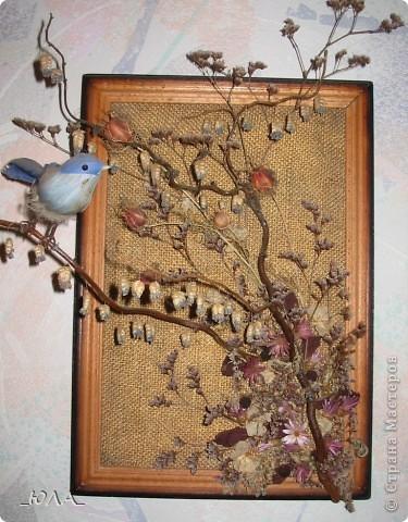 Хочу показать некоторые мои работы из сухоцветов. Может кому-то приглянутся отдельные идеи :). Увлекалась этим давно - лет 8 назад. Кое-какие работы оказались недолговечными, а многие радуют и по сей день - разве что чуть поблекли немножко.  Очень люблю этот венок. Растения закрепляла на сплетенном из ивовых веток венке. В венок вошли цветки лука-лизуна, молюцела, кермек, лавр, коробочки дильфиниума и всяческие колосочки, которые удалось собрать на природе, веточки туи окрашены серебряным лаком (для волос ))) ). Правда там еще вплетены шарики на проволочке покупные (для новогоднего декора продавались, но я использовала в других поделках ) Венок получился долгожитель - лет 7 выдержал точно (есть ли сейчас - не помню, т.к. делала его на подарок) фото 2