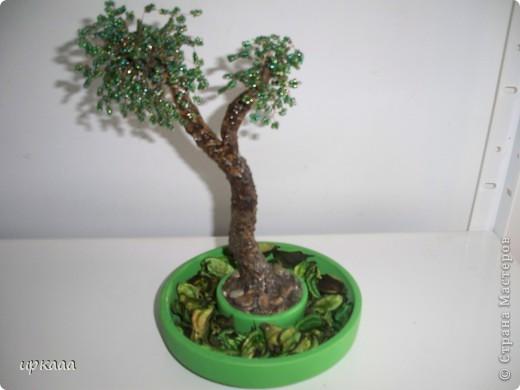 бисерное дерево фото 2