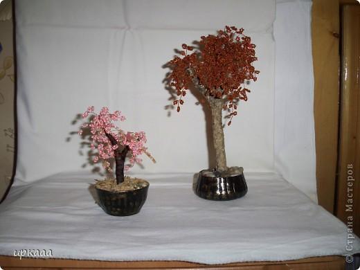 бисерное дерево фото 8
